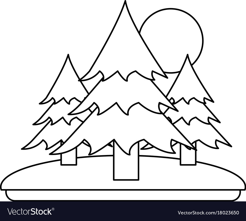 Pine trees forest with sun and grass icon image