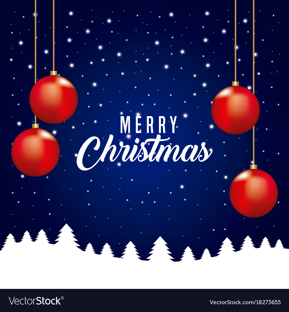 Merry christmas card red balls hanging tree pine vector image