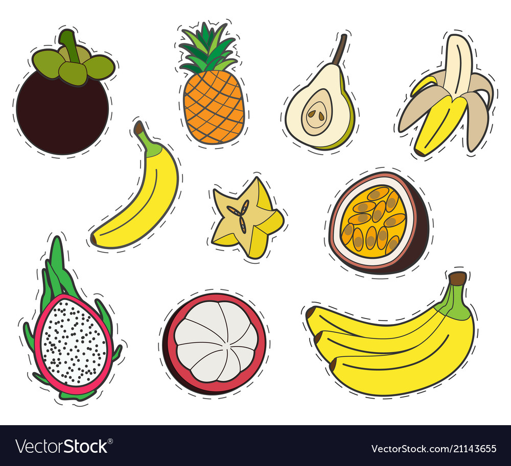 Set of exotic fruits stickers collection of