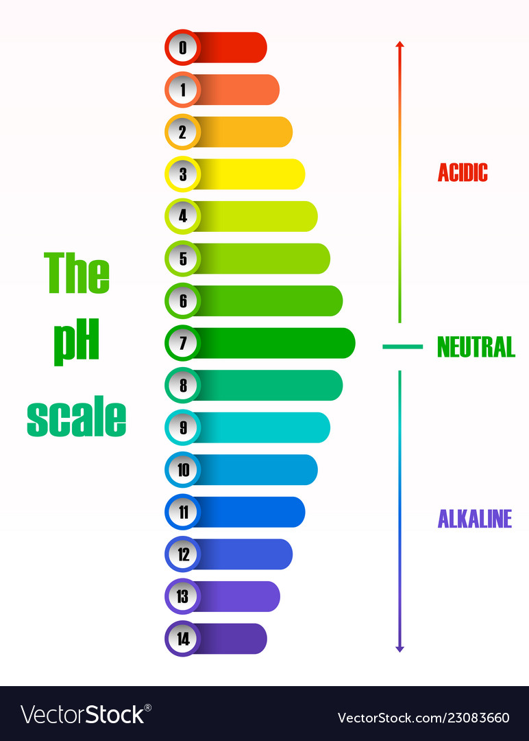 the ph scale diagram royalty free vector image Acid Dissociation Constant the ph scale diagram vector image