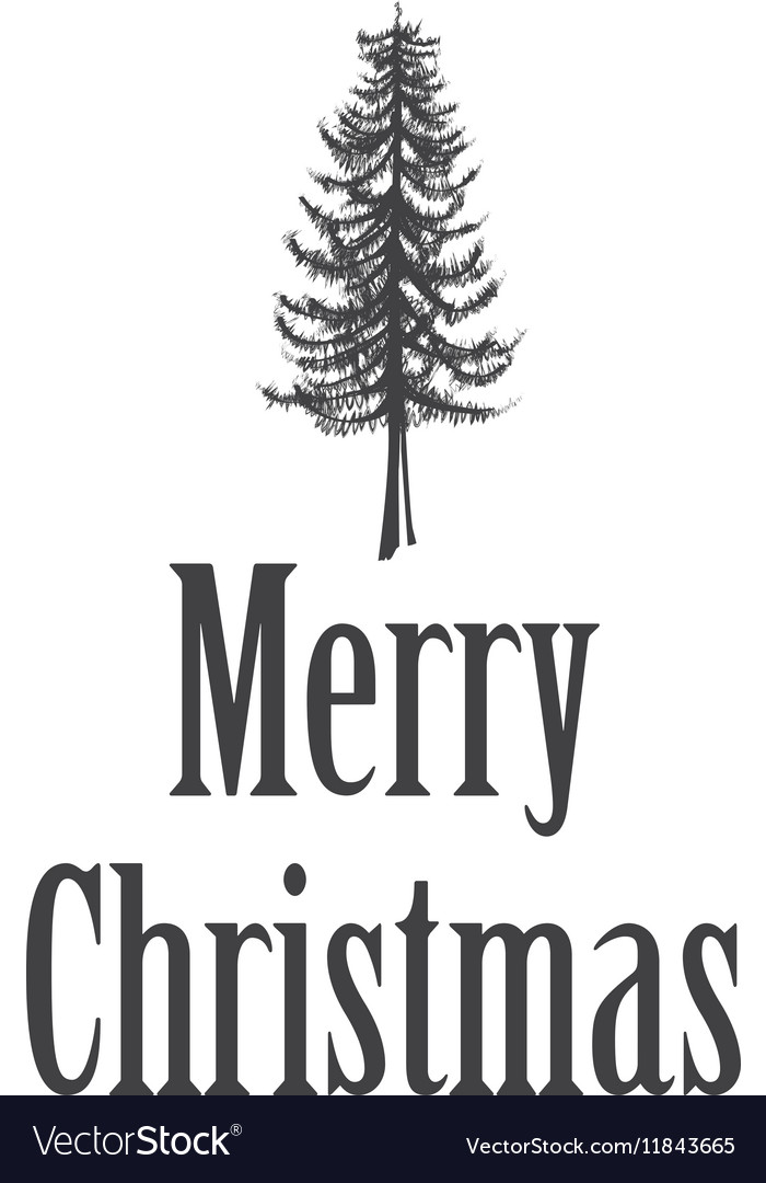 Simple marry christmas greeting card with pine vector image m4hsunfo