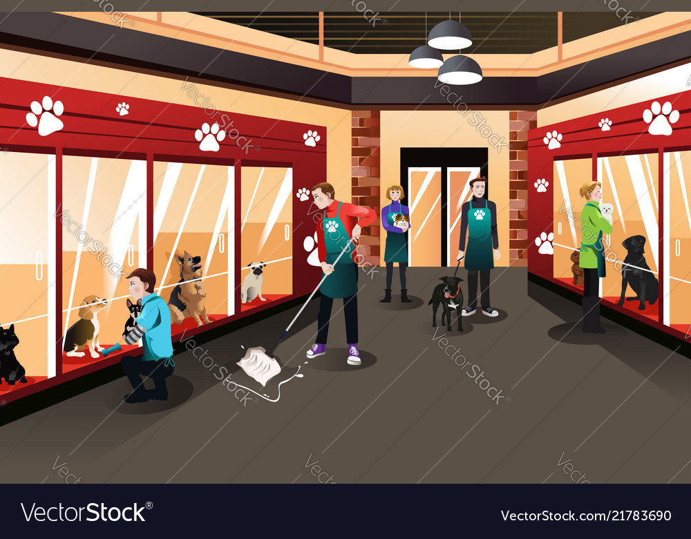 People working in animal shelter