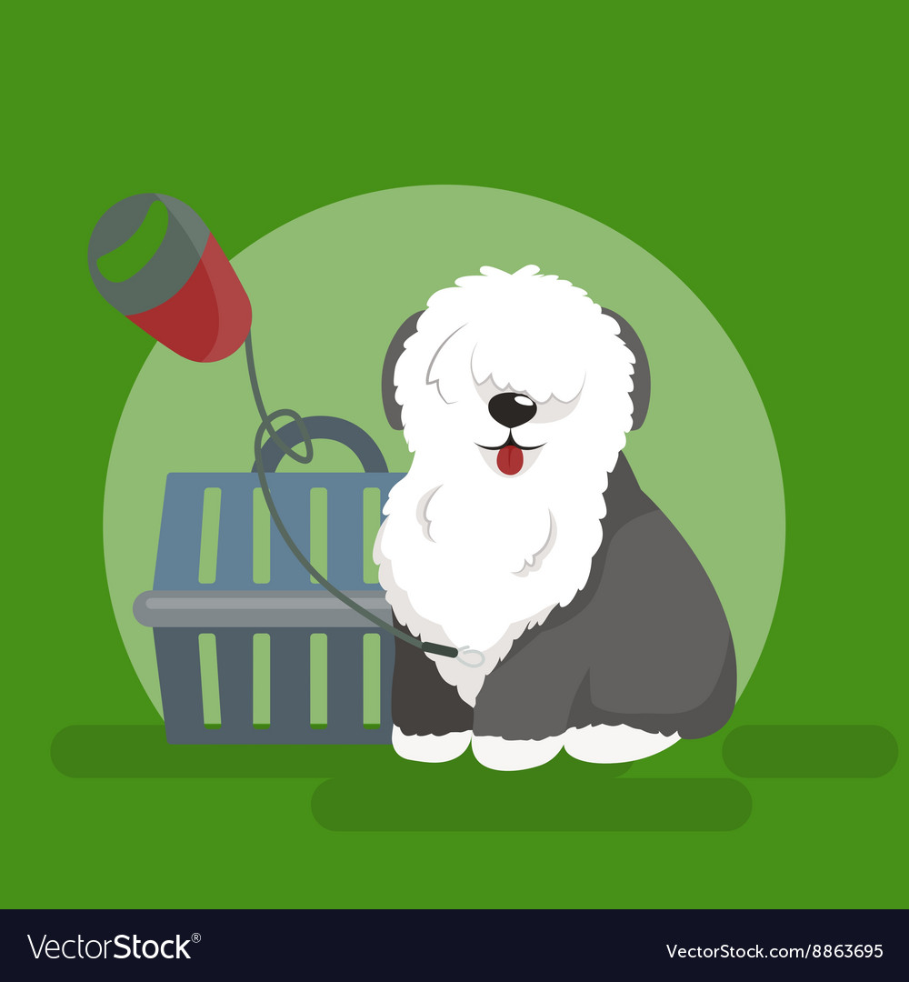 Dog collars and lead for walking transporting vector image