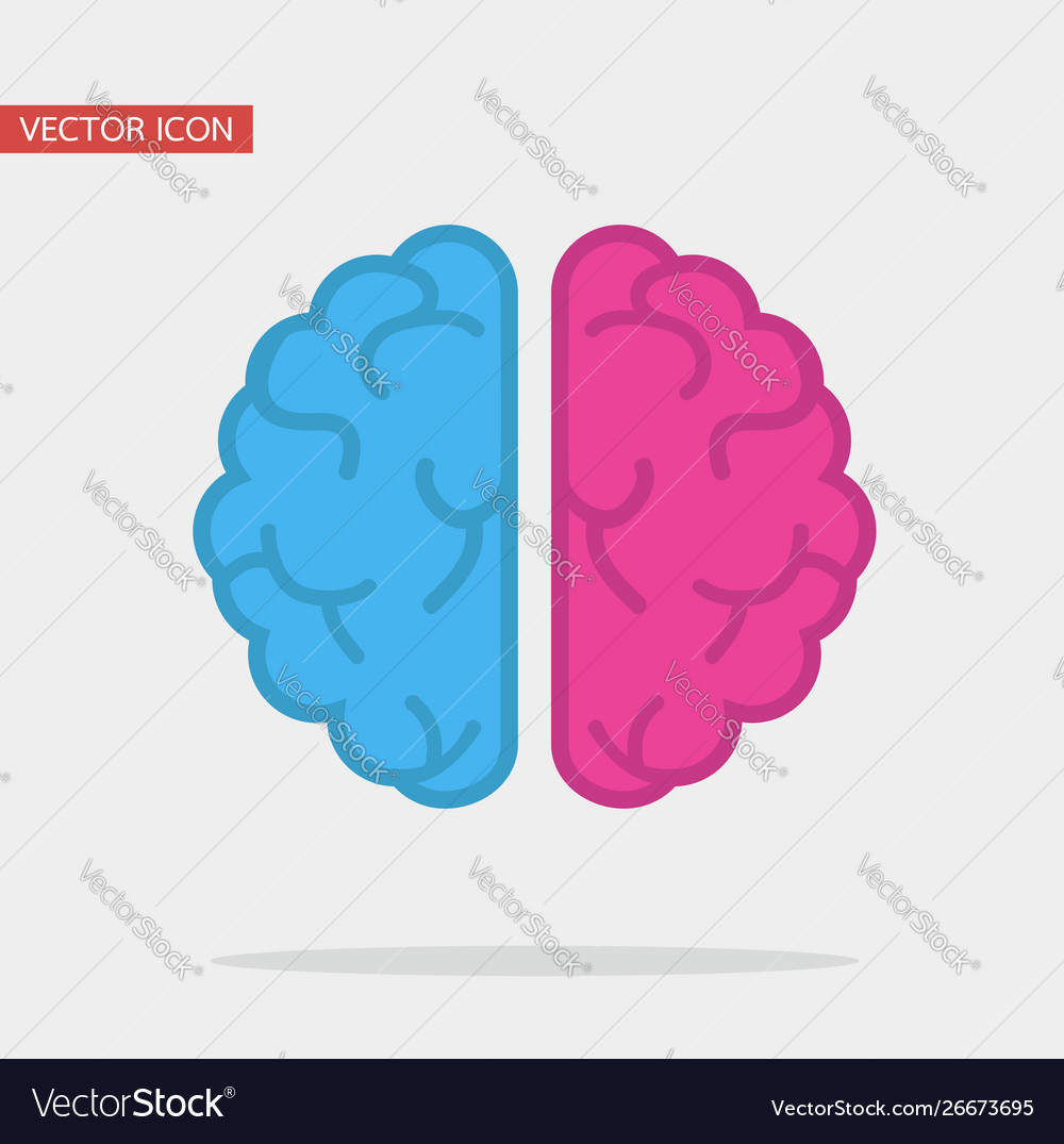 Left and right human creative brain flat