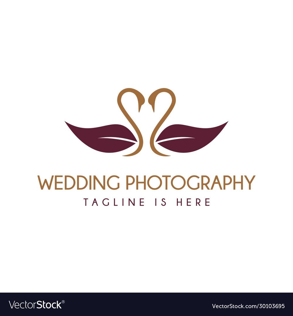 Love Swan Wedding Photography Logo Royalty Free Vector Image