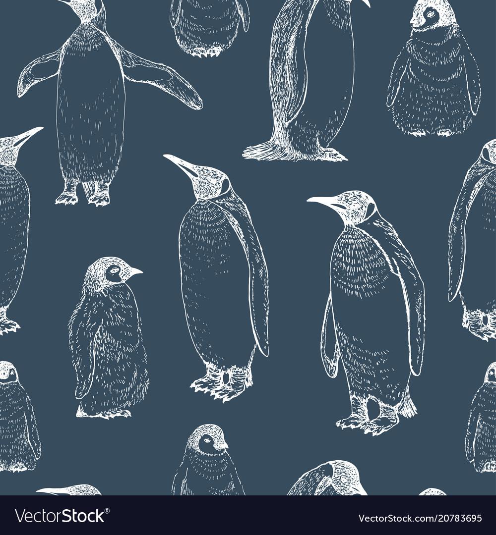 Penguin sketch hand drawn