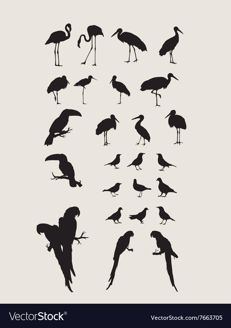 Heron and Bird Silhouettes