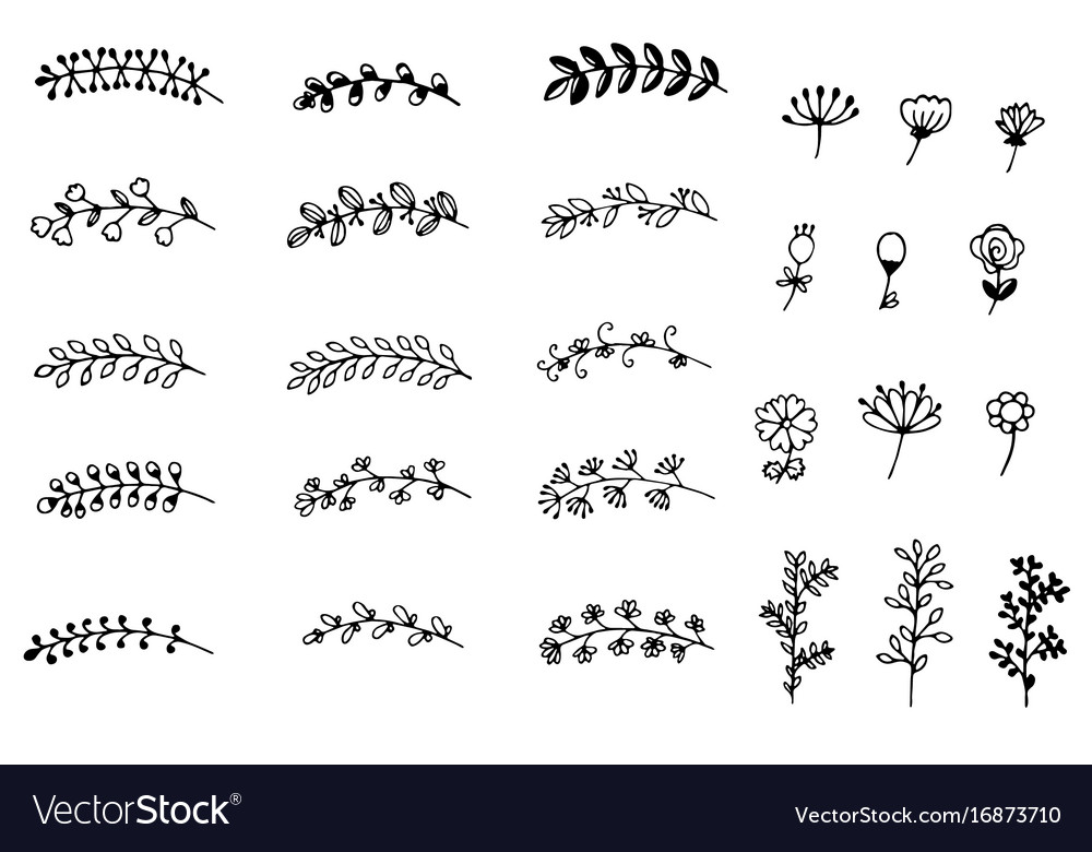 Collection of hand drawn flowers and branches