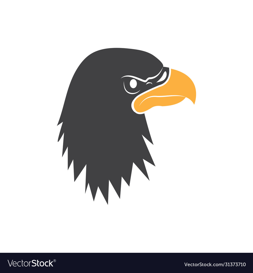 Eagle head graphic design template isolated