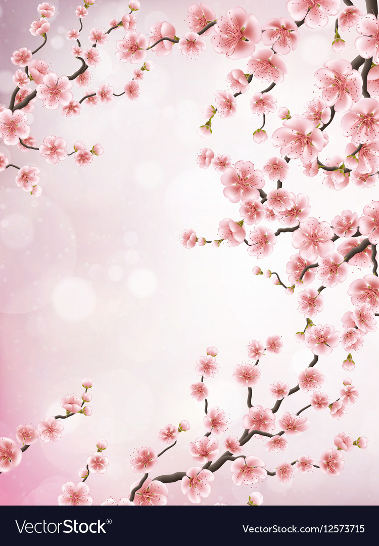 Realistic japan cherry branch EPS 10