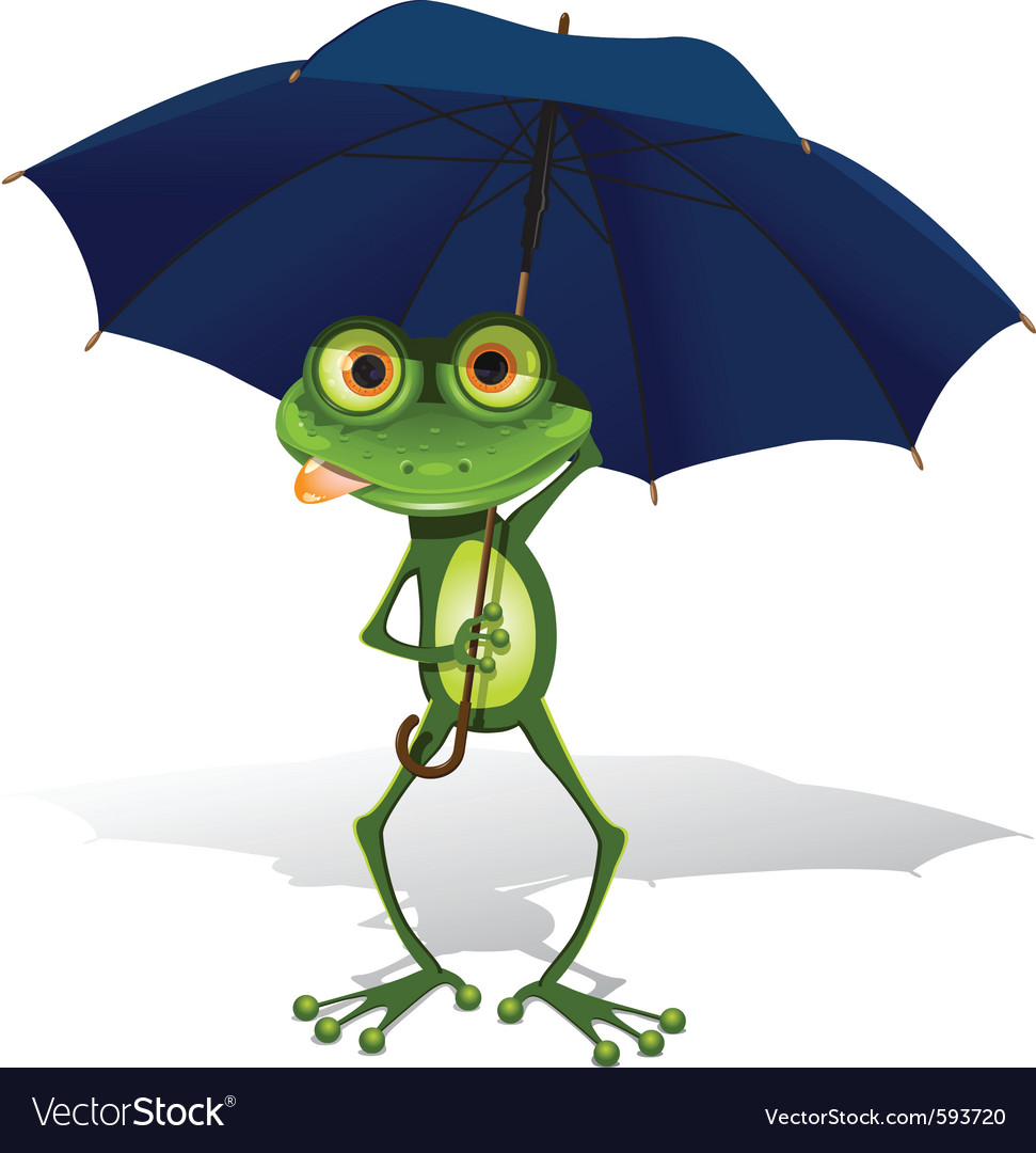 Frog and umbrella vector image