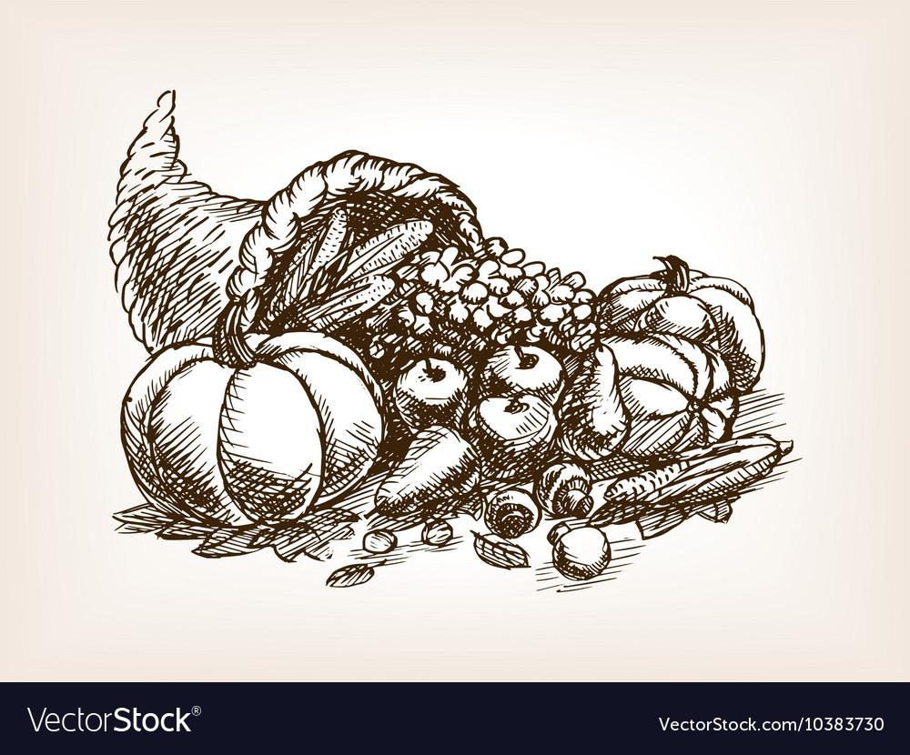 Vegetables harvest sketch style vector image