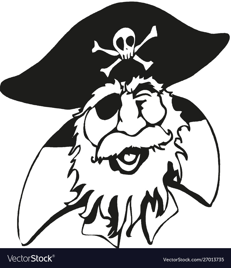 Pirate with skull emblem hat