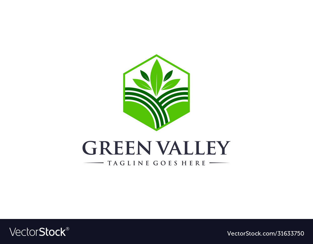 Abstract and creative green valley for nature