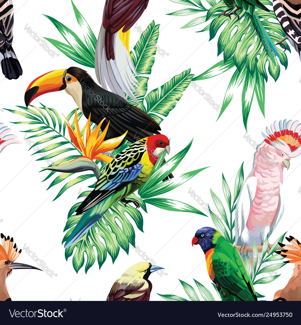 Parrot maccaw and toucan on branch