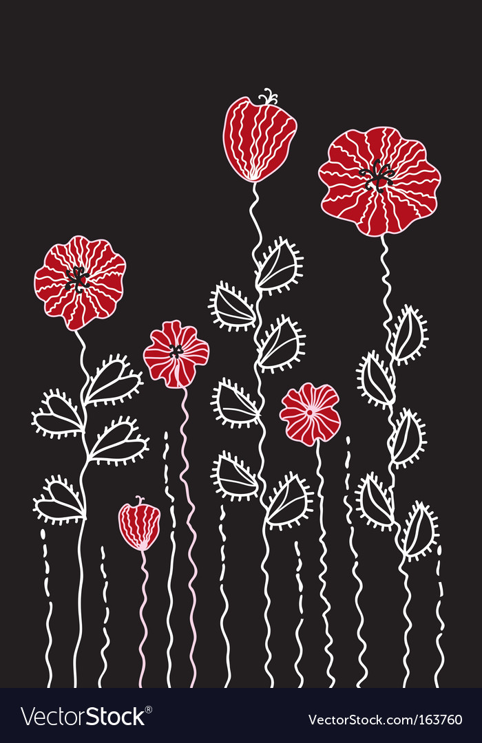 Graphic decoration poppy border vector image