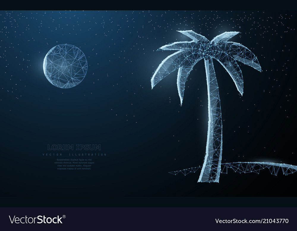 Abstract wire low poy palm nature summer beach