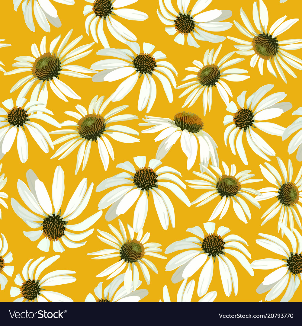 Chamomile flowers seamless patern with