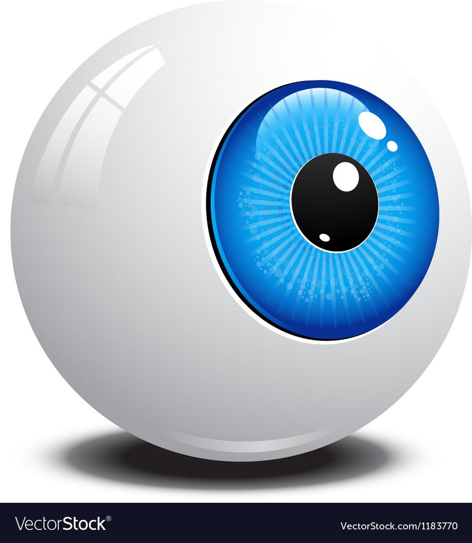 Eyeball vector image