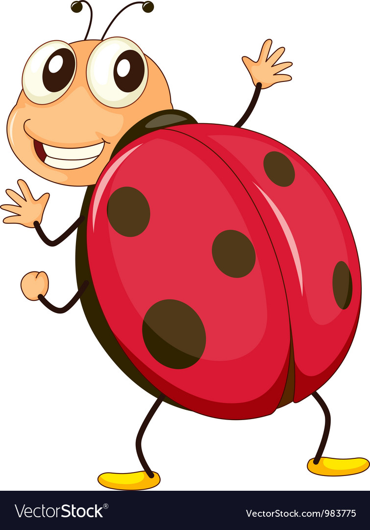 Cartoon ladybird