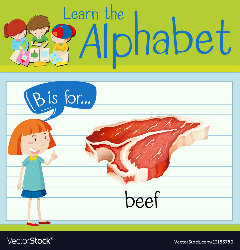 Flashcard letter B is for beef vector image