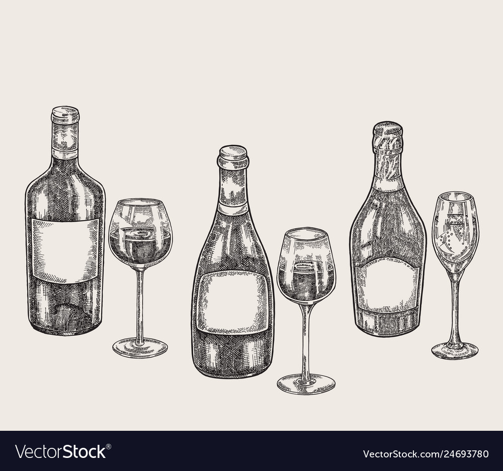 Hand drawn wine bottles and glasses in sketch