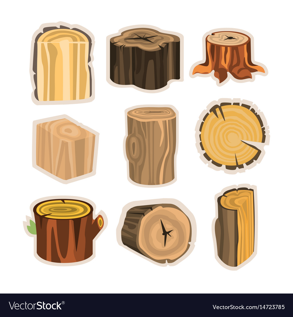 Set of different stump trees wooden materials