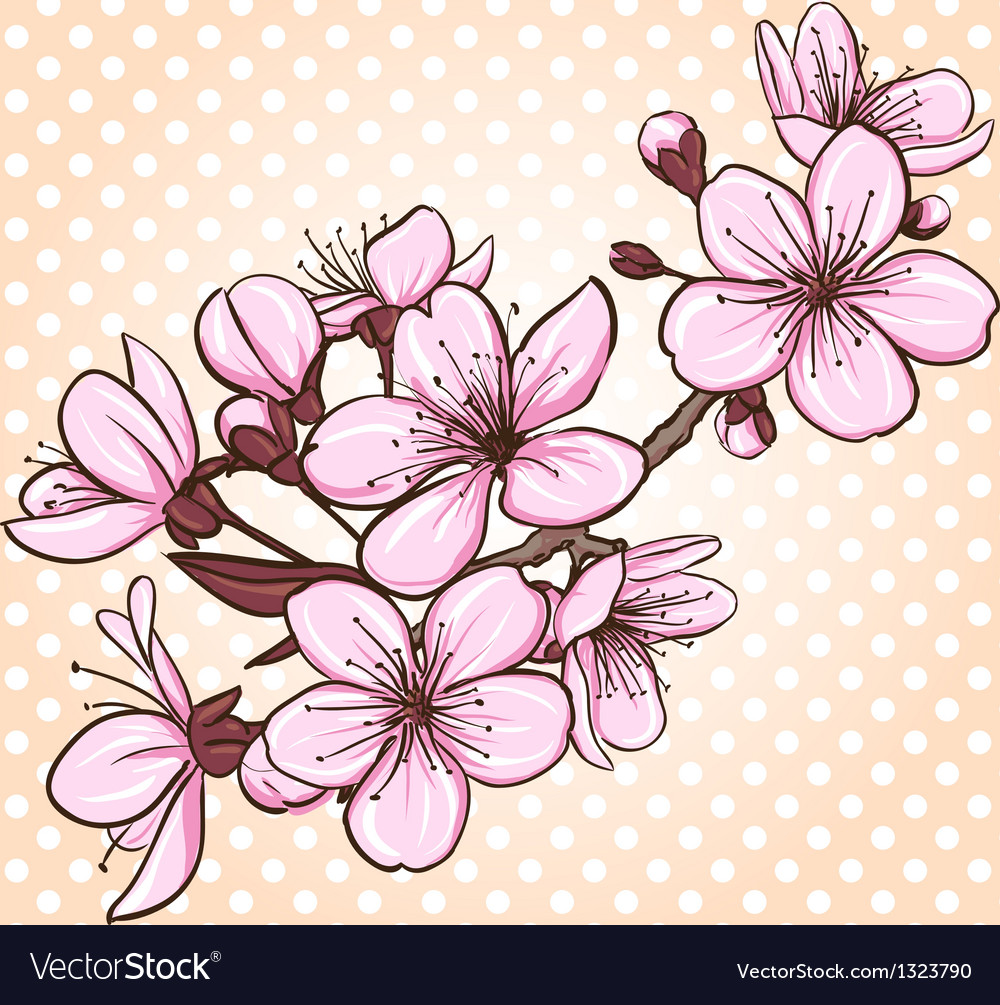 cherry blossom royalty free vector image vectorstock rh vectorstock com cherry blossom vector black and white cherry blossom vector art
