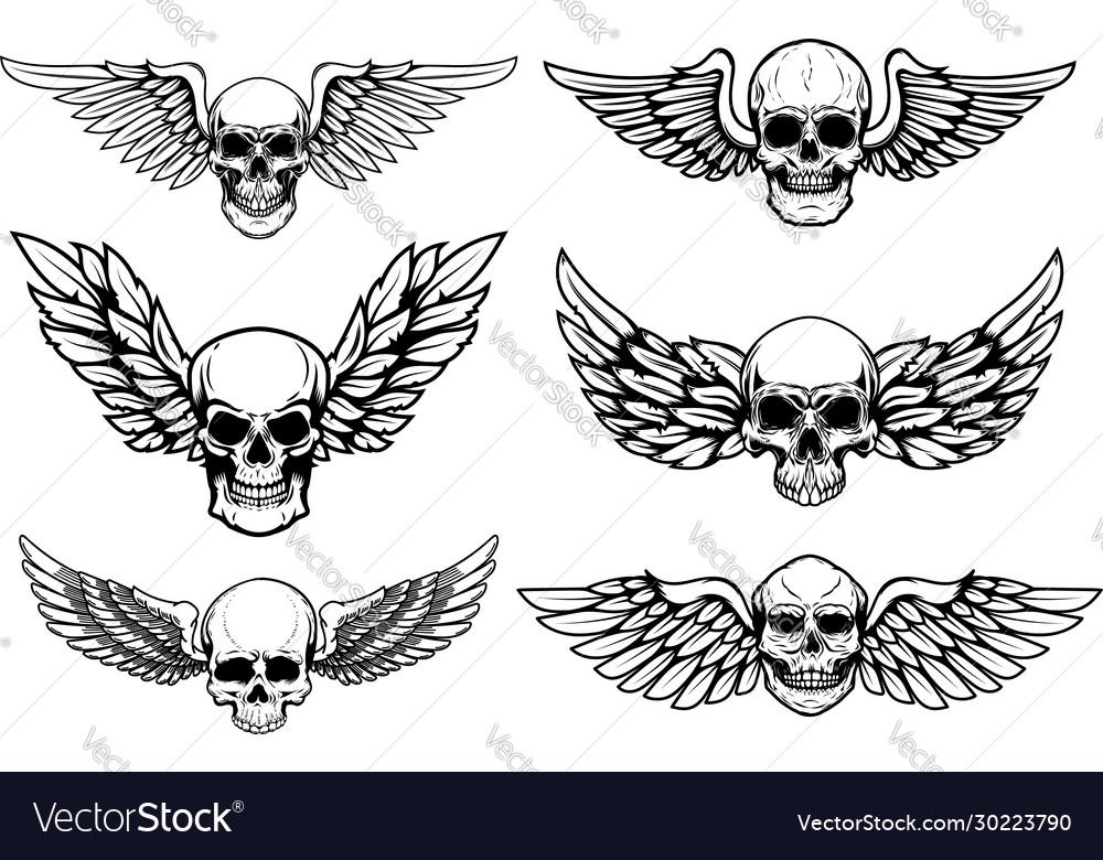 Set winged skull isolated on white