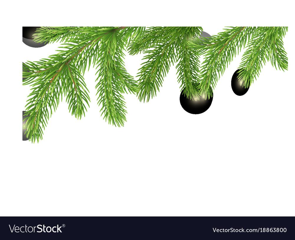 Fir branches border christmas tree frame pine