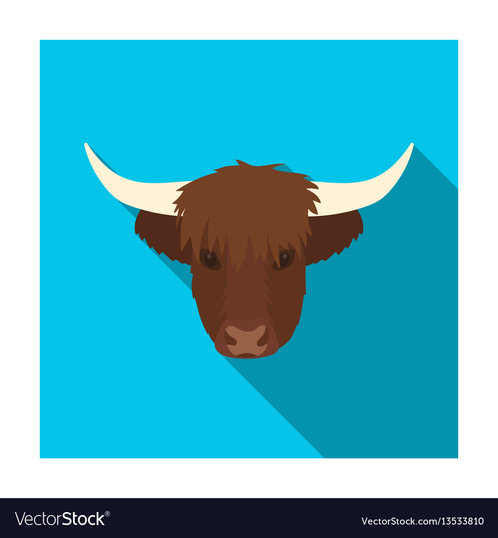 Highland cattle head icon in flat style isolated