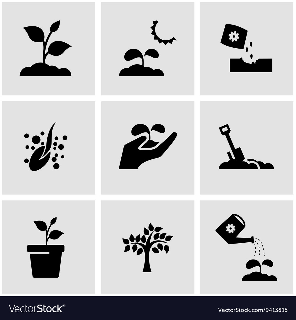 Black growing icon set