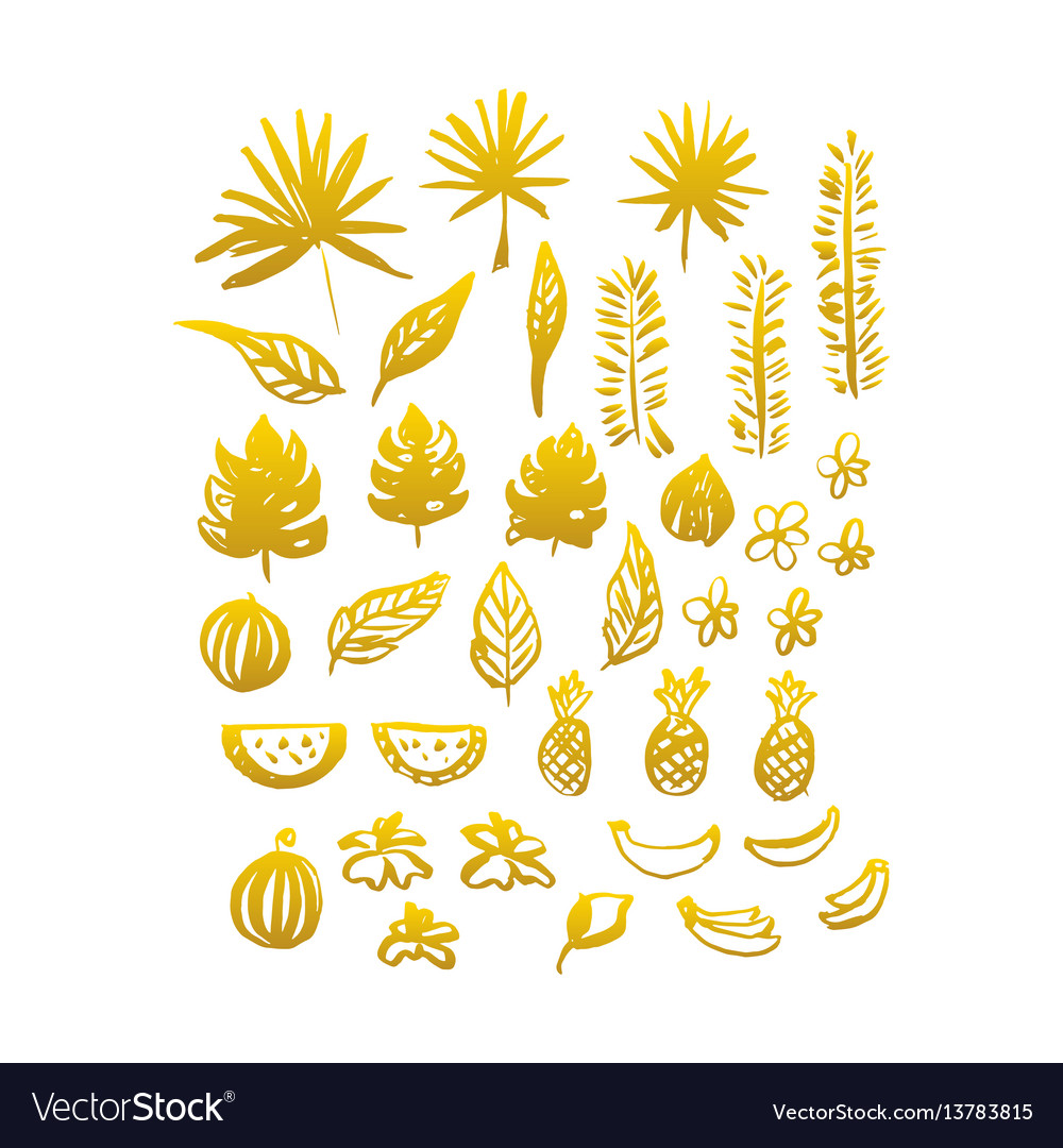 Gold hand drawn plants vector image
