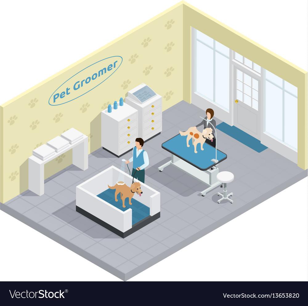 Pet groomer vector image