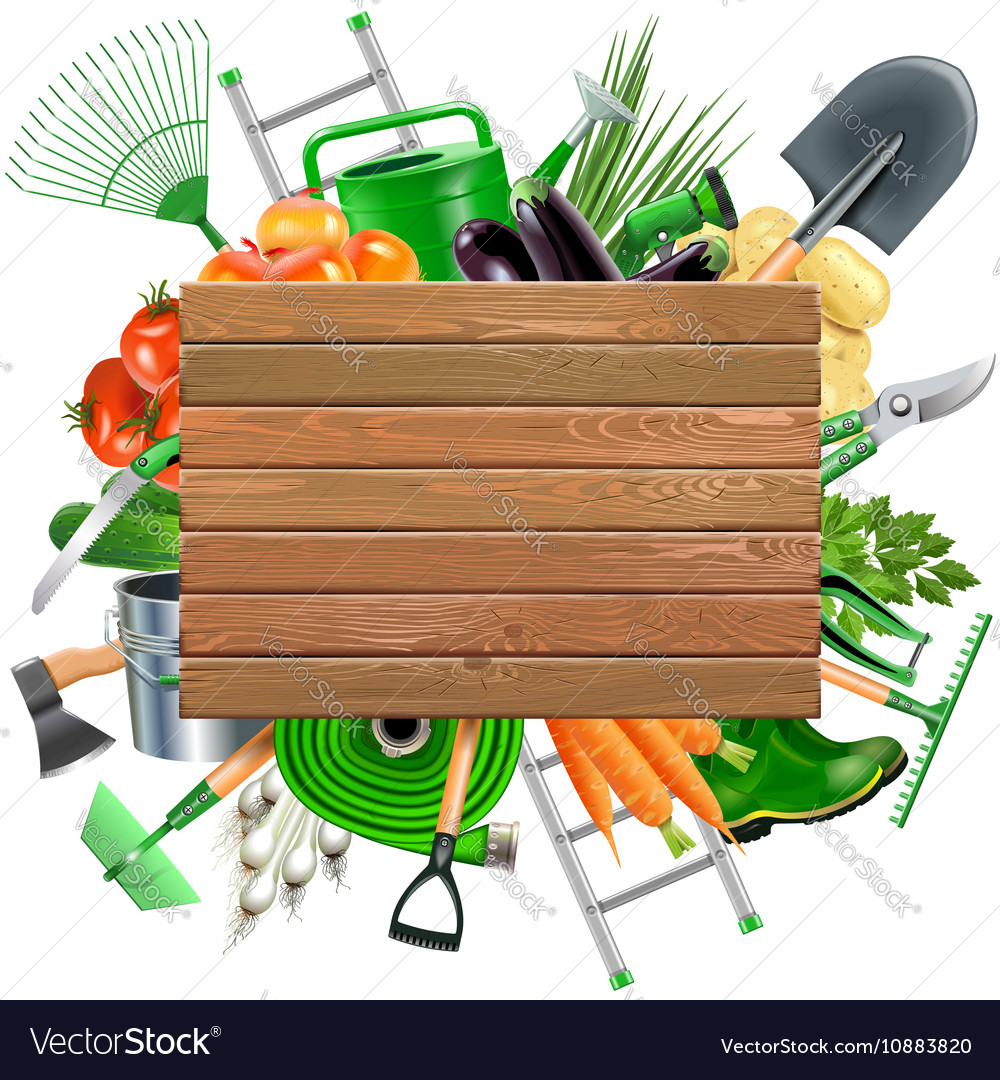 Wooden Board With Garden Accessories Vector Image