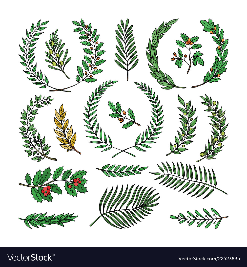 Wreath tree branch herald wreathed