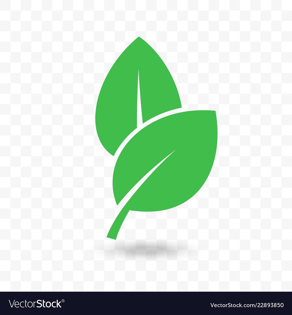 Green leaf vegan bio or eco food icon