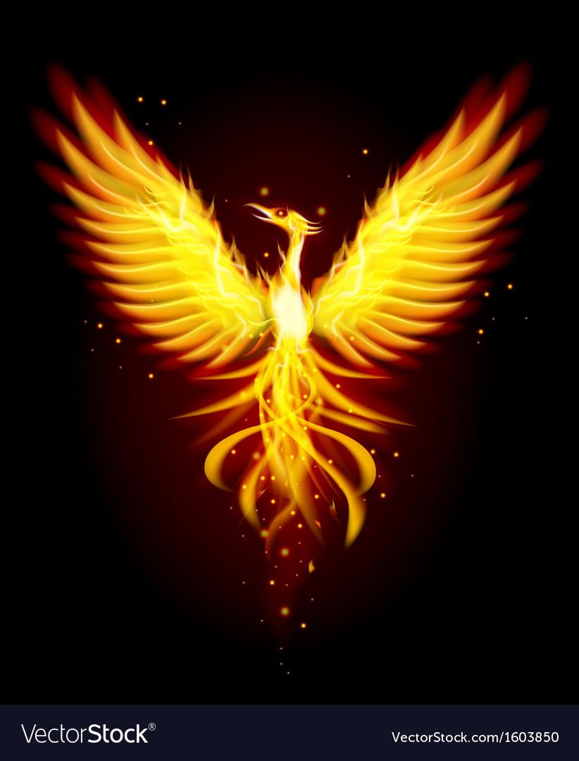 phoenix bird royalty free vector image vectorstock