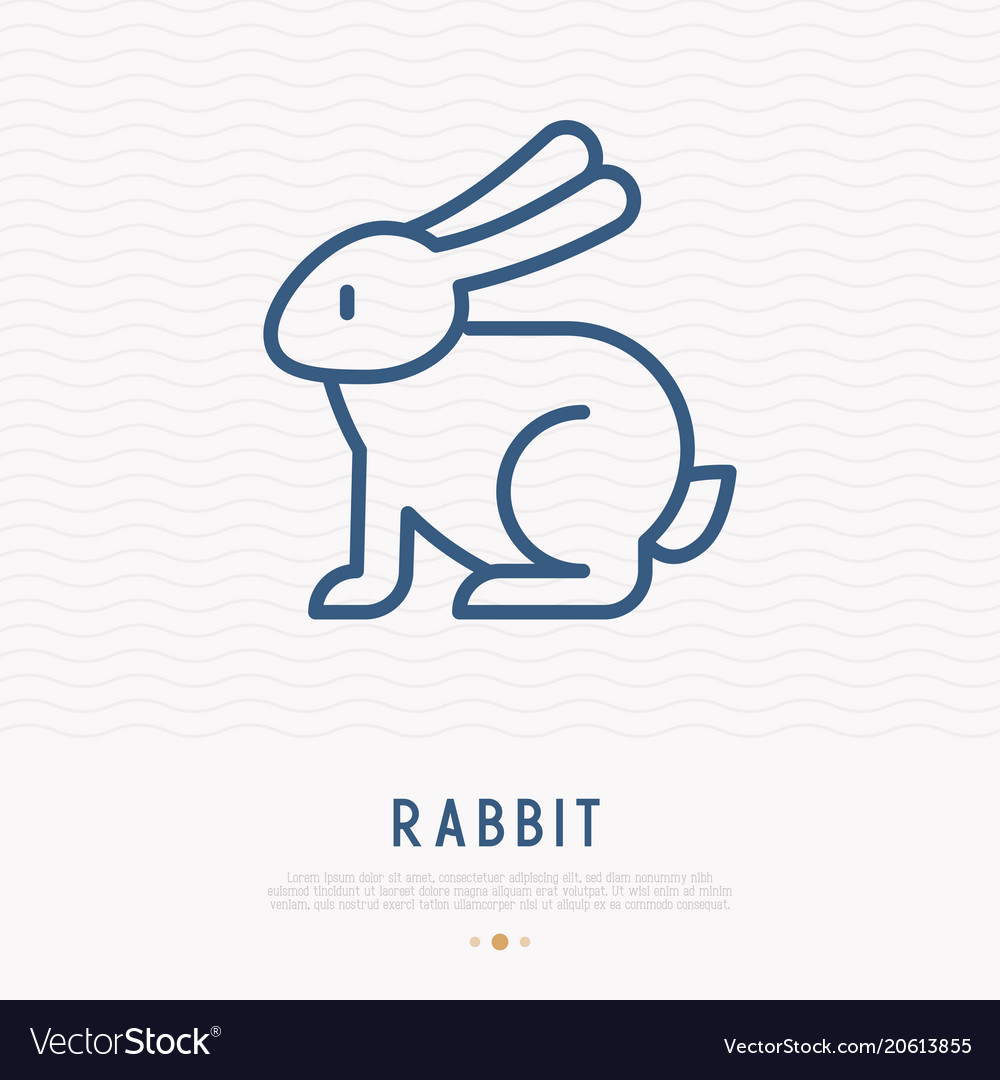 Rabbit thin line icon