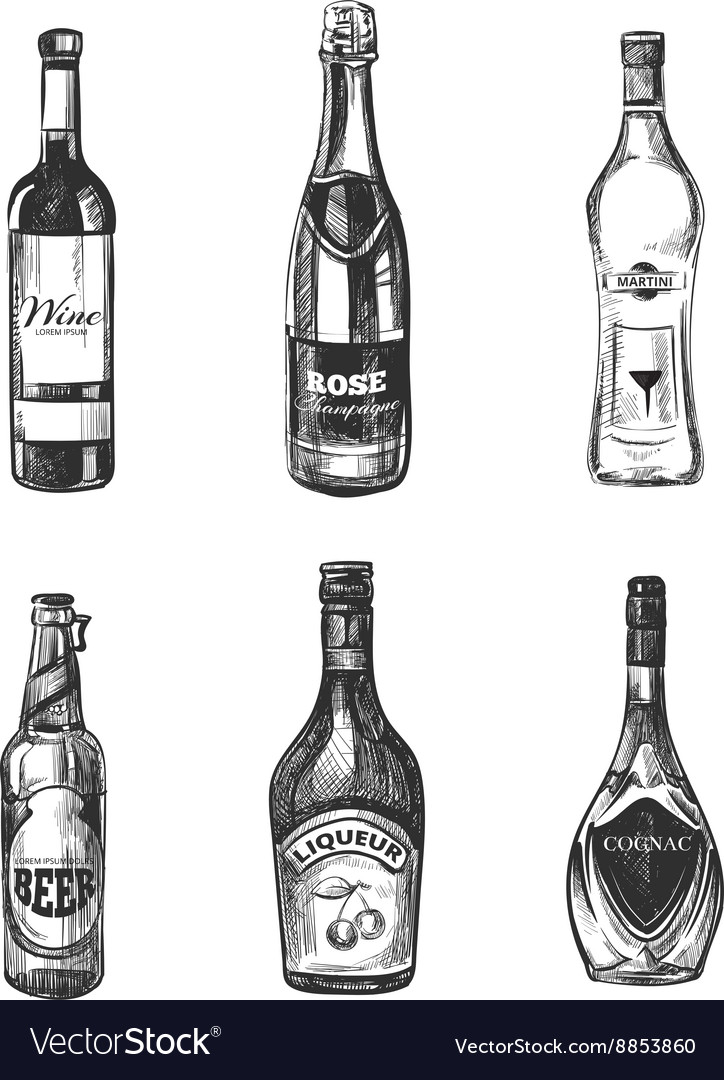 Alcoholic drinks in sketch hand drawn style