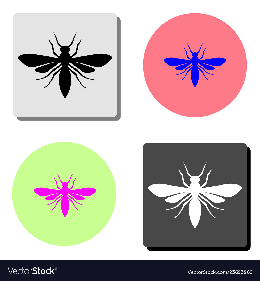 Insect flat icon