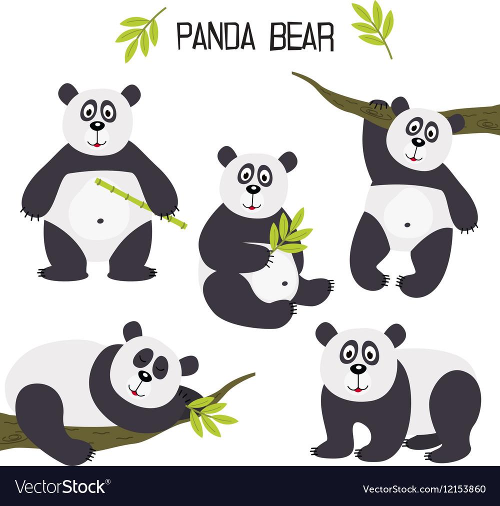 Set of isolated panda bear