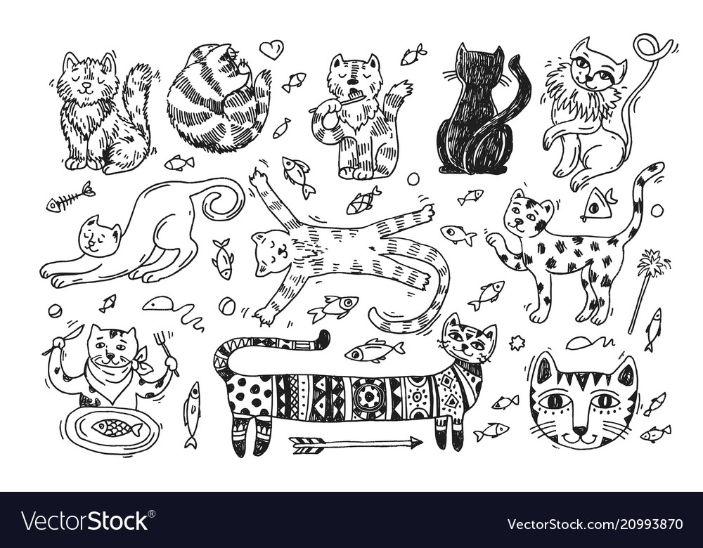 Beautiful hand drawn cute cats vector image