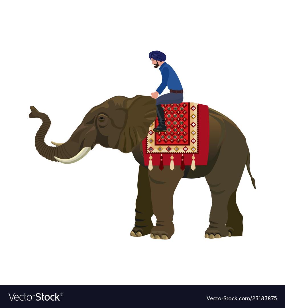 Elephant Man Pdf