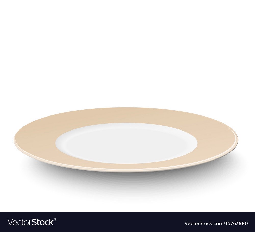 Empty color plate isolated on white background vector image