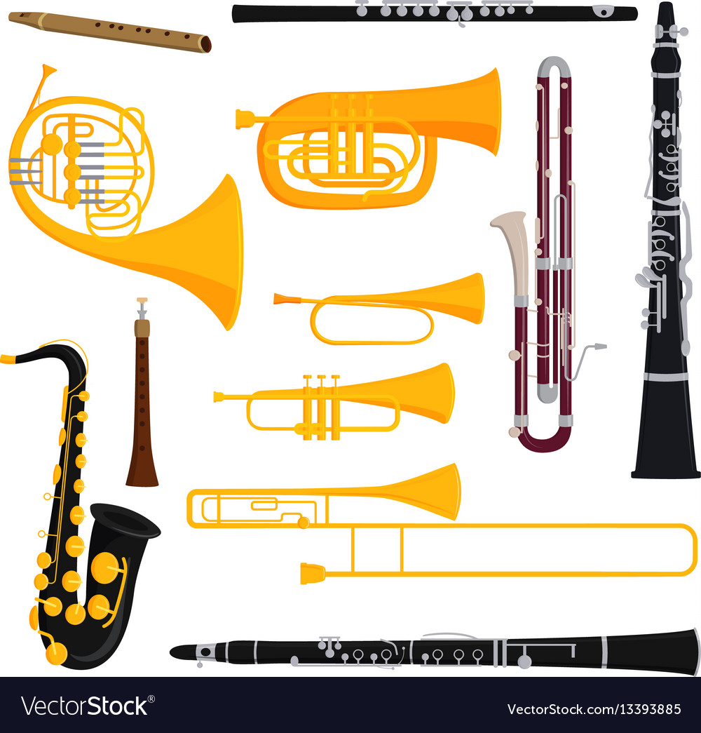 Musical wind instruments isolated on white vector image