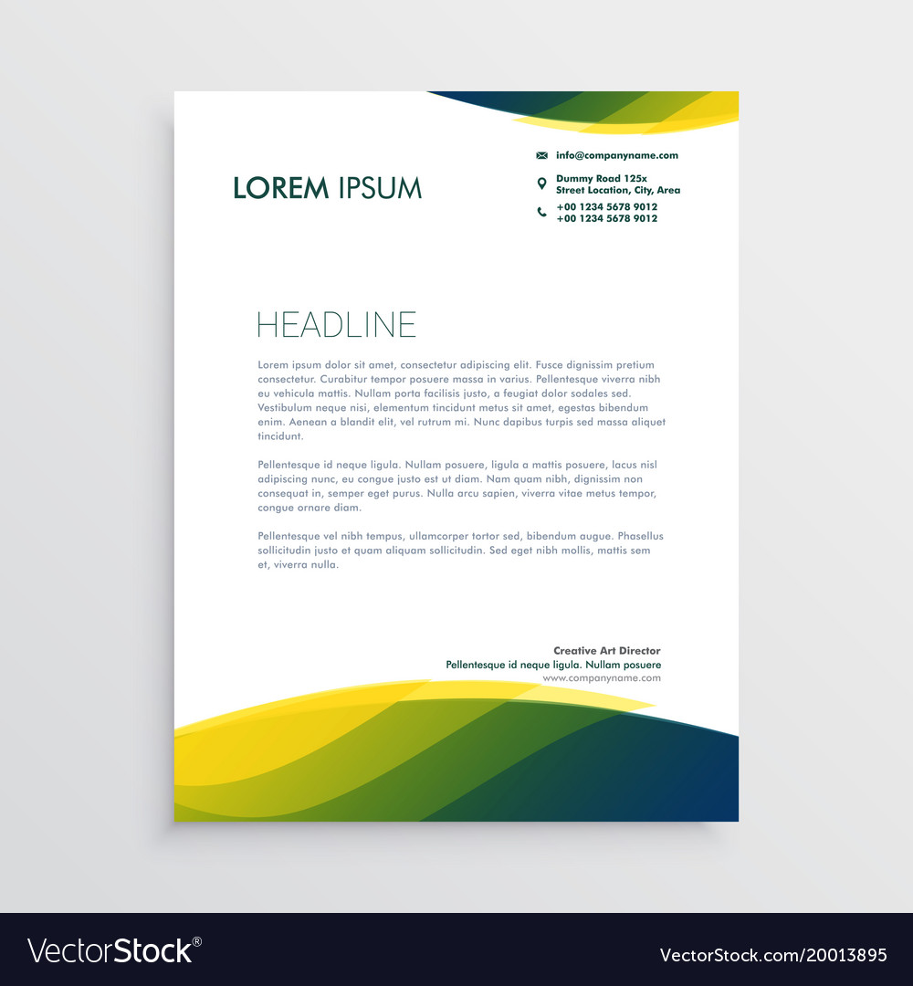 professional letterhead design royalty free vector image
