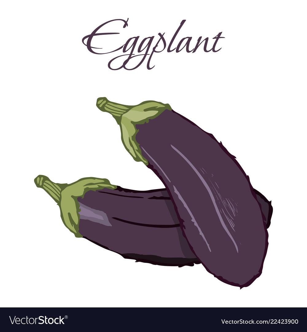 Tasty veggies eggplant