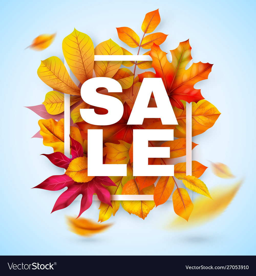 Autumn sale seasonal promotion design with red