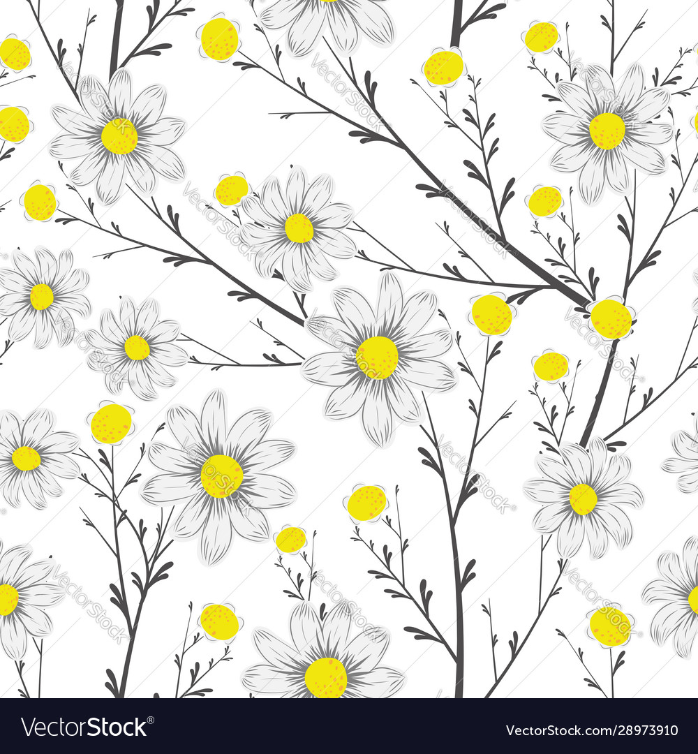 Grayscale bouquet chamomile seamless white